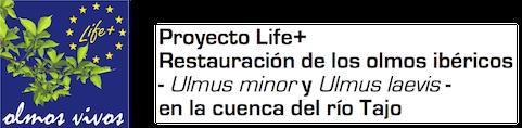 Life+ Olmos Vivos